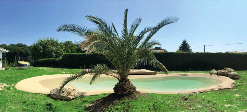 réalisation piscine lagon